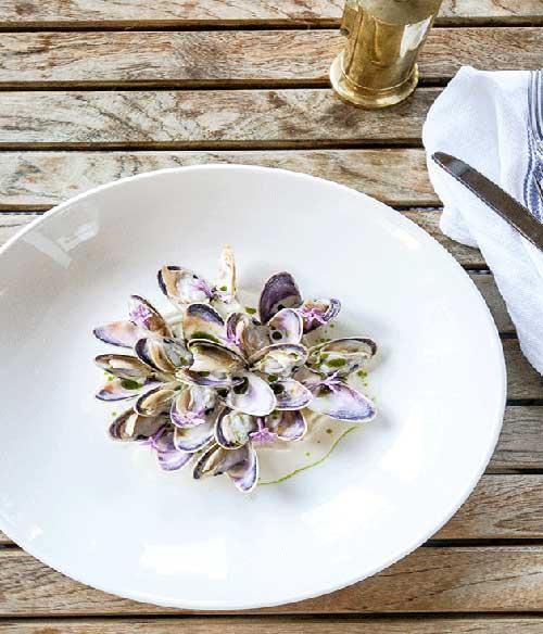 gourmettraveller - paper-daisy